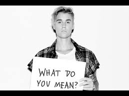 Whats Does Meme Mean - justin bieber what do you mean parody official lyric video