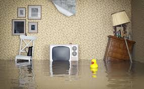 spring tips to help keep your basement dry and mold free water