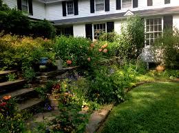 wordpress for ios carolyn u0027s shade gardens