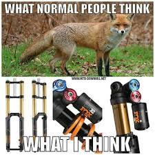 Mtb Memes - v秉sledek obr磧zku pro mtb memes kola pinterest mtb cycling