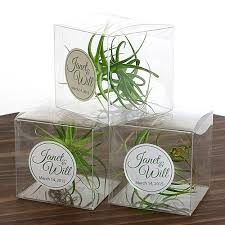 plant wedding favors plant clear gift box favor