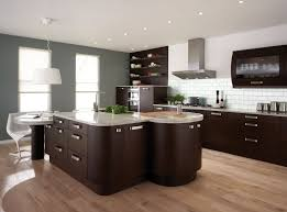 interesting design ideas kitchen wall colors with dark cabinets