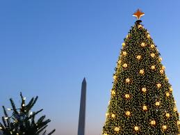 mlewallpapers com big and little christmas trees ii