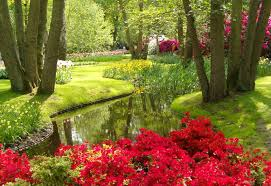 the keukenhof world u0027s largest flower garden u2013 travel around the