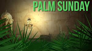 happy palm sunday 2017 whatsapp status dp fb profile cover hd