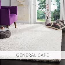 Best Way To Clean Shaggy Rugs How To Clean Area Rugs Safavieh Com