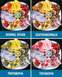 Color Blindness Psychology How People With Different Kinds Of Color Blindness See The World