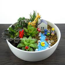 cactus dish garden plant gifts send gifts to singapore