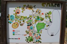 Washington Dc Zoo Map by California Living Museum Photo Galleries Zoochat