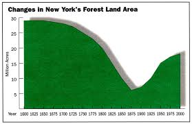 New York forest images Changes in new york 39 s forest land area nys dept of jpg
