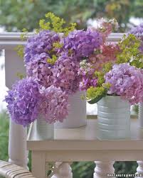 990 best gardening tips u0026 ideas images on pinterest at the beach