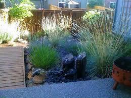 central oregon native plants xeriscape u2022 nature u0027s plan llc