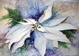 white poinsettia white poinsettia painting by newman