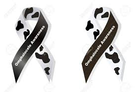 cow ribbon cow print ribbon omphalocele awareness royalty free cliparts
