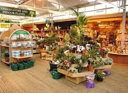 the tree shop ornamental trees cairndow argyllshire
