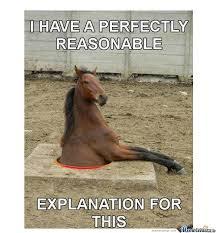 Soon Horse Meme - troll horse by annediao meme center