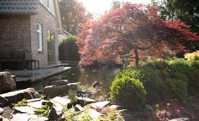 Gartengestaltung Mit Steinen Koiteich In Exklusiver Gartengestaltung Garten Bitters