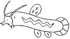 pokemon coloring pages wailord wailord pokemon coloring page free coloring pages online