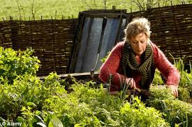 Carol Klein Life In A Cottage Garden - gardeners u0027 world presenter carol klein forced to close award