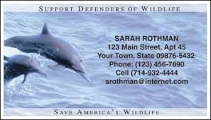 defenders of wildlife dolphins contact cards animal contact
