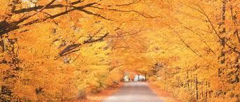 autumn england famous glorious foliage