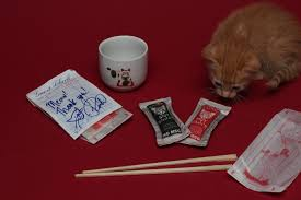 polydactyl cats asian sauce packet cat toy set giveaway polydactyl 4
