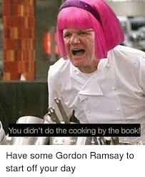 Gordon Ramsey Memes - you didn t do the cooking by the book have some gordon ramsay to