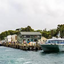 stewart island new zealand stewart island tours cruises u0026 ferry
