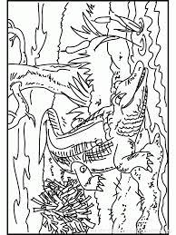 coloriage à imprimer coloriage crocodile 008