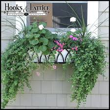 What To Plant In Window Flower Boxes - metal window boxes iron window boxes metal flower boxes hooks