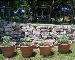 pergola garden trellis ideas entertain vine trellis ideas