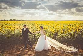 sunflower wedding mood board rustic sunflower wedding palmetto state weddings