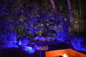 Blisslights Outdoor Firefly Light Projector Blisslights Spright Motion Blue Laser Light Remote Outdoors