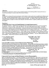 Mission Statement Examples For Resume Student Resume Editing Service From Resumeedge Assignment
