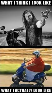Funny Harley Davidson Memes - harley davidson funny memes google search harley davidson