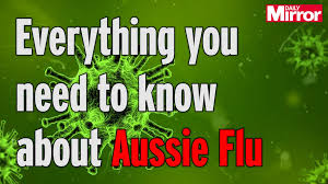 Watch Out Guys Meme - aussie flu symptoms to look out for and how to avoid the deadly