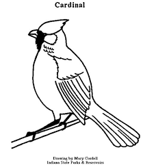 dnr coloring pages animals