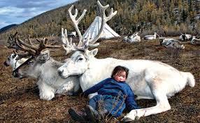 somuk valley hovsgol province outer mongolia a duhlar child