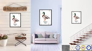 Duck Home Decor Home Decor Creative Duck Home Decor Decor Modern On Cool Photo