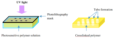 ijms free full text hydrogels for engineering of perfusable
