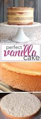 best 25 vanilla sponge cake ideas on pinterest sponge cake