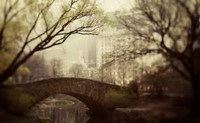 photographs of paris fine art photography by irene suchocki dreamy new york photography