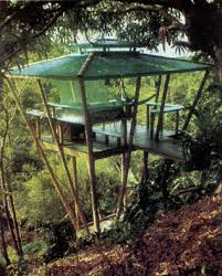 building your own tree house how to build a house how to build a treehouse diy mother earth news