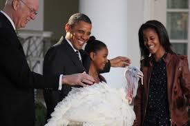 obama pardons thanksgiving turkey national thanksgiving turkey pardoned at white house scripps