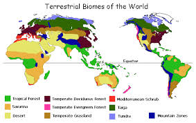 biomes map geography 101
