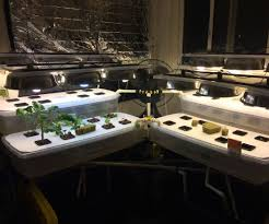 indoor hydro aqua ponic garden gardens welcome to and suits