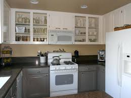 best type of paint for inside kitchen cabinets painting inside kitchen cabinets black appliances makeover house