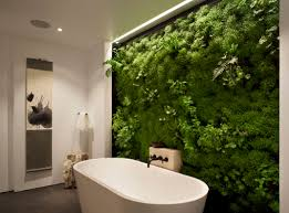 interior garden wall how to perfect indoor plant displays for your home times free press