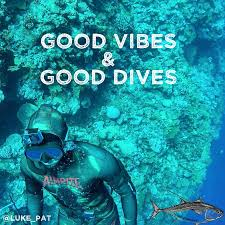 Good Vibes Meme - good vibes good dives spearfishing gear australia