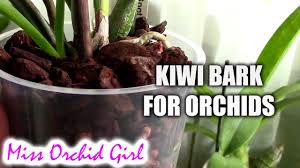 Orchid Bark Kiwi Bark For Orchids Product Review Youtube